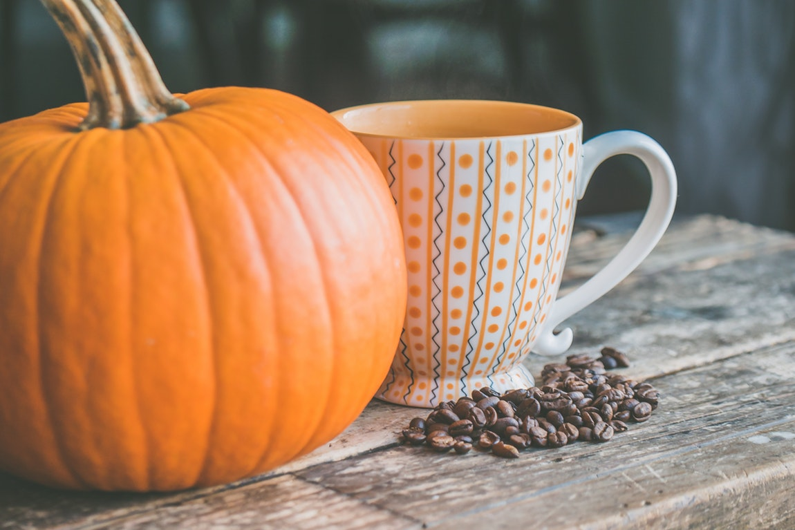 3 Pumpkin Treat Recipes For Your Dogs