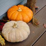 America's Best Pumpkin Festivals